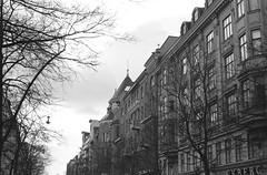 (maiandtheskies) Tags: building nikonfe2 bw film takatalvi winter city street bulevardi helsinki