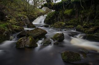 Nature Trail  ( W13 )