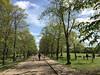 Limes Avenue (jovike) Tags: cockfosters enfield espe london park people tree woman