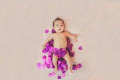 398A8556 (AlexSSC) Tags: baby photography sydney indoor strobist flashlight studio setup