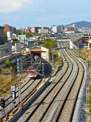 Tren a la Sagrera