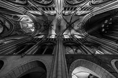 divine... (Blende1.8) Tags: dom cathedral limburg lahn limburgadlahn church kirche interior indoor indoors architecture architektur light licht black white mono monochrome monochrom schwarz weiss inneraum säulen dach windows fenster carstenheyer sony a7ii ilce7m2 a7m2 voigtländer ultrawideheliar 12mm wideangle wide