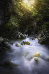 Le torrent des gorges. (jonathan le borgne) Tags: torrent bleu rayoflight light ray mountainstream nature water river rocks sun trees outside landschaft landscape green yellow tree summer