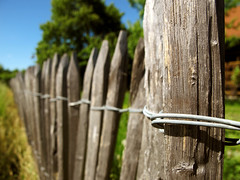 Wooden Garden Fence (Batikart) Tags: wood light sky plants sunlight macro tree nature field grass lines closeup yard rural canon fence germany garden landscape geotagged outdoors deutschland wooden spring wire focus europa europe day pattern dof pov farming natur pflanze perspective feld himmel tranquility romance friday makro fenced zaun ursula holz landschaft garten baum freitag frhling sander g11 draht fellbach frhjahr hff lumbers lndlich hlzer oeffingen 100faves 2013 batikart focusontheforeground canonpowershotg11 happyfencefriday