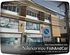 เลือกที่ตั้งร้านปลาทอง ต่อจาก แผนธุรกิจการจำหน่าย ปลาทอง ตอนที่1