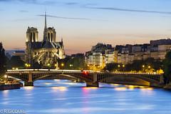 Notre Dame (Paris) (renan4) Tags: bridge sunset paris france seine nikon notredame bluehour renan magichour d800 quais ledelacit gicquel rgicquel renan4 70200mmf4vr