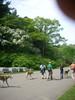 arboretum2010008