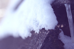 Cold (obsequies) Tags: wood november blue winter white snow canada cold dead snowflakes grey frozen whimsy frost purple bokeh manitoba flakes tones sorrow distressed dull whimsical muted