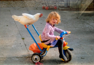 Chicken to Ride