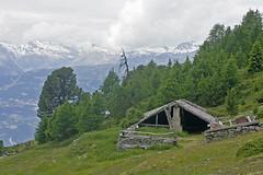 Tignousa/Saint -Luc  Valais Suisse (luka116) Tags: nature berg montagne schweiz switzerland suisse swiss relief svizzera paysage moutain wallis valais montagnes bergerie tignousa