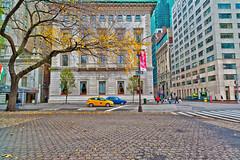 Autumn-D700-CZ-21-59th-2nd_0287 (JB Artful Photo) Tags: park nyc newyorkcity autumn newyork color fall colors beautiful pretty centralpark manhattan newyorknewyork nikond700 distagont2821 carlzeiss21mm