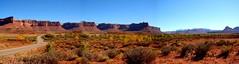 Needles (GretaLars) Tags: autumn fall colors leaves yellow landscape utah desert canyonlands moab redrock