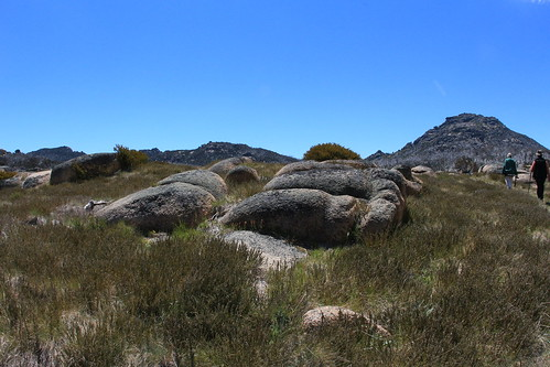 Mt Buffalo - the walkers