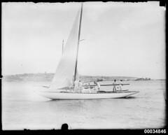 8-metre class yacht racing near Shark Island