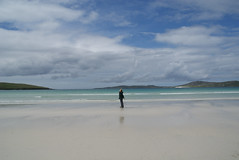 Far from the Maddening Crowd, Seilebost Beach, West Harris - Pippa Gardner