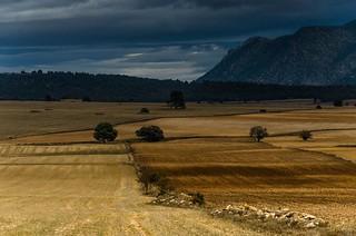 Tierra de campos camino de Inazares en el lejano noroeste de Murcia | Massepfad Inazares Felder im äußersten Nordwesten von Murcia