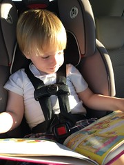 """Paul Reads in the Car • <a style=""""font-size:0.8em;"""" href=""""http://www.flickr.com/photos/109120354@N07/32298449593/"""" target=""""_blank"""">View on Flickr</a>"""