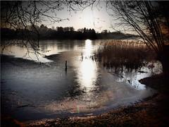 Winter mood at the lake Poenitz on another day (Ostseetroll) Tags: deu deutschland geo:lat=5404260232 geo:lon=1070141315 geotagged gronenberg kleinerpönitzersee schleswigholstein winter see lake wasser water spiegelungen reflections eis ice