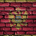 National Flag of Montenegro on a Brick Wall