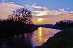 Going down around the bend (Sundornvic) Tags: riversevern shrawardine shropshire river water trees nature sky blue clouds sun set shine light colour reflection wet pentaxart pentax k50 wr18135mm