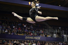 2017-02-11 UW vs ASU 81 (Susie Boyland) Tags: gymnastics uw huskies washington