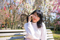 Young woman talking over smart phone in public park (Apricot Cafe) Tags: img315432024years asia asianandindianethnicities japan japaneseethnicity kyotocity kyotoprefecture sigma35mmf14dghsmart casualclothing charming cheerful cherryblossom cherryblossomshanami citylife day enjoyment freedom freshness happiness horizontal lifestyles oneperson onlywomen outdoors photography plumblossom publicpark relaxation sitting smartphone smiling springtime talking walking weekendactivities women youngadult