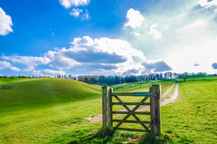 the gates in your life can often be sidestepped for a better brighter path in your future (I was blind now I see!) Tags: royston heath golf course gate wood grass green hill sky clouds path blue sun streaks bright trees