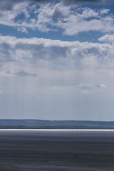 (z e d s p i c s™) Tags: balaton badacsony hungary hongarije magyarország landscape lakescape zedspics allrightsreserved 1704