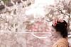 20170225_049 (kikukudo) Tags: 上七軒 北野天満宮 梅花祭野点大茶湯 kyoto maikosan 舞妓