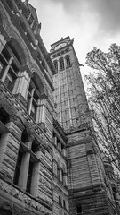 Old City Hall - Toronto (KWPashuk) Tags: samsung galaxy note5 lightroom kwpashuk kevinpashuk building architecture oldcityhall government toronto ontario canada heritage monochrome mono outdoors clock tower gothic