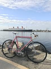 Bertoni Professionale (Be Steel) Tags: iphone7 california longbeach queenmary toeclips columbusslx columbus eroica pinkbike campagnolo italiansteel bertoni steelbike classicbike
