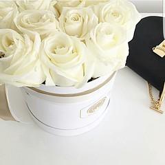 The future belongs to those who believe in the beauty of their dreams. www.buntinoblumen.de  #flowerbox #luxury #luxurylifestyle #bestoftheday #instagramers #picoftheday #fotooftheday #instafoto #foto #rosebox #roses #kunst #luxus #liebe #flowerporn #flow (galiceanu_casanova) Tags: frauen beautiful instagramers moet best blumenbox bestoftheday fotooftheday kunst flowerporn hamburg luxus buntinoblumenhamburg freunde liebe moetchandon rosebox picoftheday luxurylifestyle flowerbox girl luxury nightout roses instafoto foto flowerpower flowers