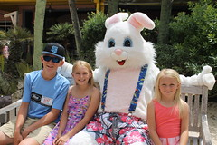 Easter Bunny 079