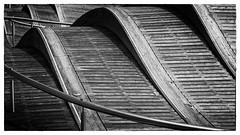 Wave (Alan Amati) Tags: amati alanamati toronto ontario canada harbor harborcenter wave blackandwhite blackwhite bw monochrome deck walk walkway curve curved buckled harborfront harbourfront harbourfrontcentre centre martingoodmantrail trail martin goodman queensquay wavedeck simcoe simcoewavedeck