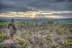 Watching the Light Show 110/365 (rmrayner) Tags: hdr crepuscularrays dartmoor moorland littlehaldon raysoflight devon clouds landscape countryside gorse 110365 365project 365the2017edition