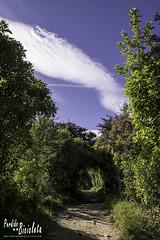 Tunel Track - Abel Tasman National Park (Lucas E. Vigano) Tags: marahau perdido en mi bicicleta isla sur new zeland nueva zelanda perdidoenmibicicletacom abel tasman national park cicloturismo aire libre