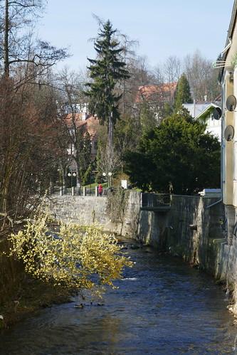 Wiosenna Bystrzyca Dusznicka w Polanicy-Zdroju na południe z mostu przy Dąbrowskiego