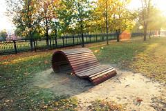DSC_0092 (RD1630) Tags: belarus gomel travel trip reise autumn sunny park tree bank outside outdoor