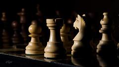 2017 Parabellum (jeho75) Tags: sony ilce 7m2 macro makro schach schachfiguren schachspiel chess parabellum blitz flash indoor