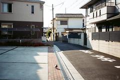 Hesitation dove (yasu19_67) Tags: canoneos55 ef40mmf28stm 40mm kodak proimage100 alley atmosphere photooftheday film filmism filmphotography analog osaka japan