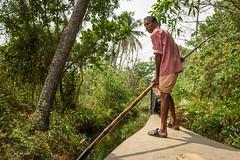 Through The Kerala Backwaters (luke.me.up) Tags: kerala backwaters tourism india cochi cochin nikon d810