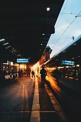 and still not tired (lina zelonka) Tags: frankfurt frankfurtammain frankfurthbf linazelonka hbf bahnhof trainstation train zug ice fernverkehr deutschebahn germany hessen hesse ffm vertical light sunset sunrays railway eisenbahn rheinmain rheinmaingebiet deutschland europe europa nikond7100 18105mm
