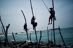 Stilt Fishermen (alisdair jones) Tags: ef35mmf14lusm stilt fishermen fishing sea water ocean rocks sticks srilanka