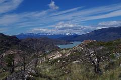 imgp3780 (Mr. Pi) Tags: lake andes rocks mountains chile torresdelpaine hills shrubland patagonia trees nationalpark lagogrey