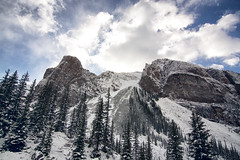 Looking Up (gwendolyn.allsop) Tags: d5200 moraine lake canada mounain sky trees snow cold