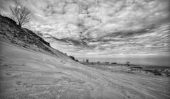 Warren Dunes (mswan777) Tags: sand dune tall slope beach lake michigan seascape landscape sky cloud warren dunes bridgman nikon d5100 sigma 1020mm monochrome black white expanse scenic ansel