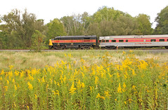 Trains and Goldenrod (craigsanders429) Tags: cuyahogavalleyscenicrailroad cuyahogavalleynationalpark goldenrod cvsrtrains cvsrlocomotives cvsrmotivepower cvsr6771 cvsrfpa4no6771 saintluciesound passengertrains passengercars