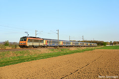 Fin de journée pour cette Sybic et sa rame TER 200 Alsace (Lion de Belfort) Tags: train chemin de fer bb 26000 sybic ter 200 alsace champs coucher soleil bartenheim 26145 corail
