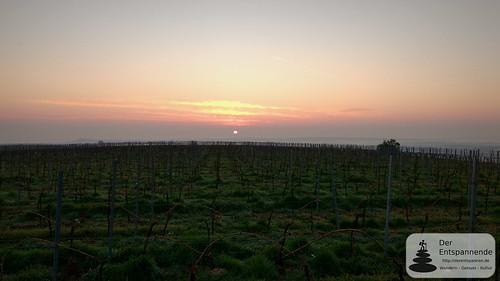 Sonnenaufgang am Selzer Berg