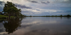 At Day's End (*ScottyO*) Tags: panorama whitesands murrayriver sa southaustralia australia landscape riverscape tree eucalyptus shadow reflection water river horizon clouds sky weather stormy calm tranquil still peaceful green grass bank blue gray evening dusk sunset nature